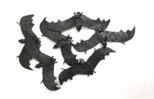 HALLOWEEN BATS 6S