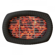 BBQ PARTY PLATE FORMSHAPED 6s