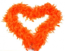 FEATHER BOA ORANGE